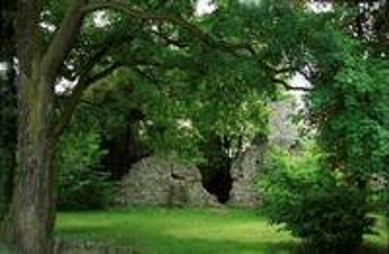 Galeria Ruiny zamku rycerskiego